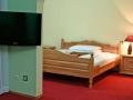 Hotel Putnik Kopaonik (8)