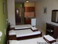 Vila Afroditi Leptokaria Apartmani sa bazenom (14)