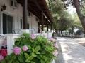 Vila Olga Toroni Sitonija ponuda Apartmana (5)