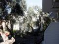 vrachos-beach-letovanje-apartmani-hoteli-smestaj-vrahos-grcka (4)