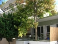 studio-sofokles-nea-kalikratia-letovanje-apartmani-smestaj-halkidiki-grcka (2)