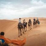 Egipat Hoteli za letovanje 2021